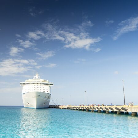Manta Shore Excursion